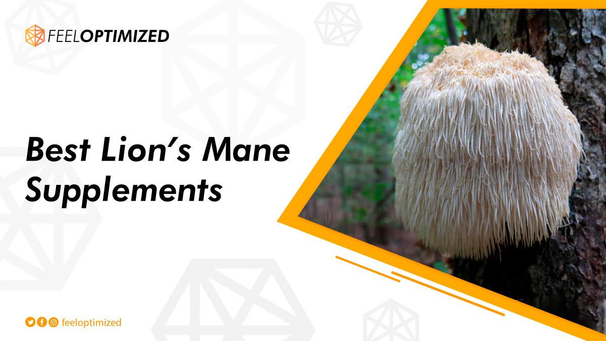 best-lions-mane-supplement