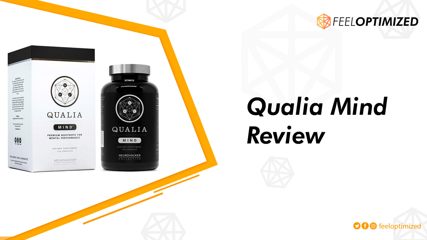 qualia-mind-review