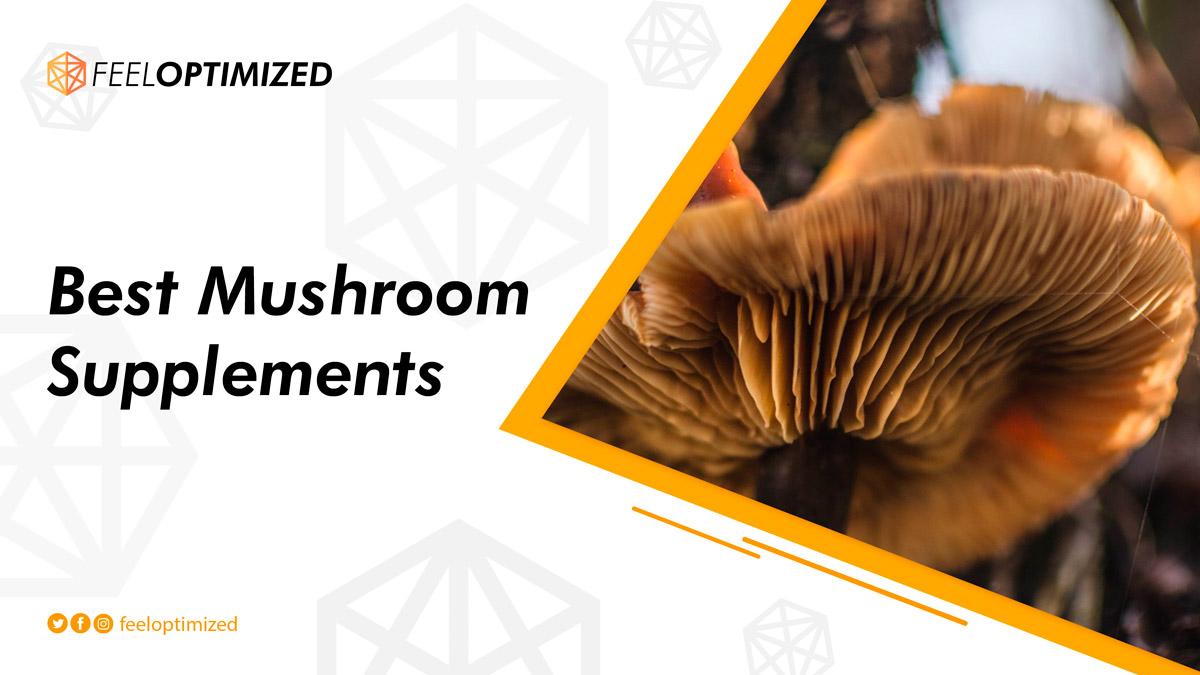 best-mushroom-supplements
