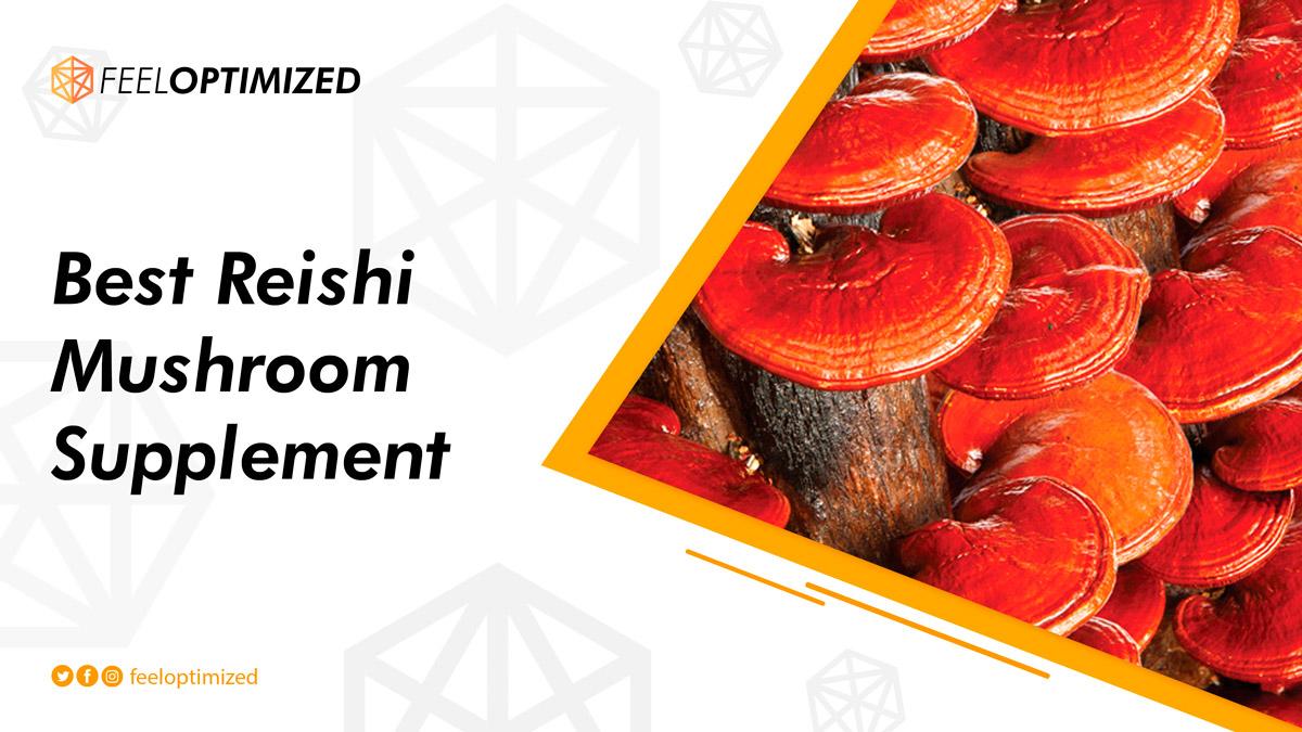 best-reishi-mushroom-supplement-