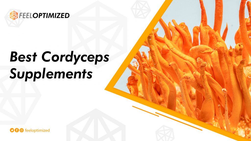 best-cordyceps-supplement